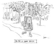 The Not-So-Dumb Brick