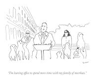 """""""I\'m leaving office to spend more time with my family of meerkats"""
