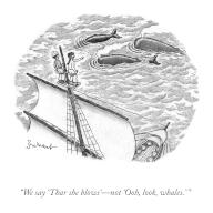 """""""We say-\'Thar she blows\'-not \'Ooh, look, whales.\'"""