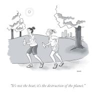 """""""It's not the heat; it's the destruction of the planet"""