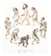 New Breakthrough in Understanding Darwin\'s Theory
