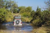 Off road vehicle in the Moremi Game Reserve, Okavango Delta, Botswana.