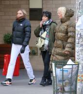German photographer Ellen von Unwerth is seen wearing a leopard print coat in Soho in New York City Pictured: Ellen von Unwerth Ref: SPL5141968 210120 NON-EXCLUSIVE Picture by: Christopher Peterson / SplashNews.com Splash News and Pictures ...