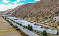 (200926) -- QAMDO, Sept. 26, 2020 (Xinhua) -- Aerial photo shows greenhouses in Yazhong Village of Qamdo, southwest China\'s Tibet Autonomous Region, Sept. 21, 2020. Greenhouse vegetable planting developed in Yazhong Village provides jobs for impoverished villagers here and helps boost their income. (Xinhua\/Jigme Dorje